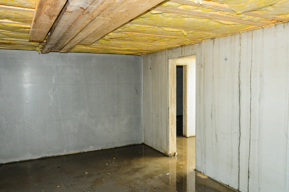 wet basement and water damage